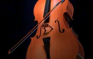 Top 5 Cellos For Beginners