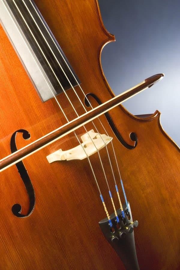 Cello Facts