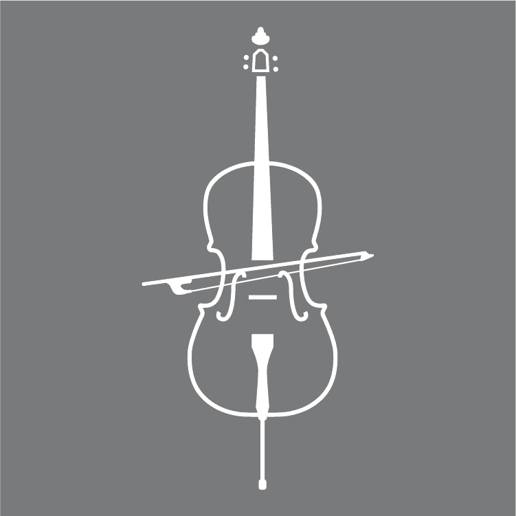 Beginner's Guide To Learning The Cello