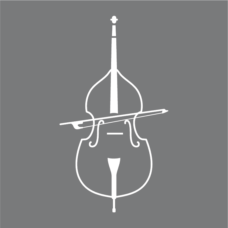 Beginner's Guide To Learning The Double Bass