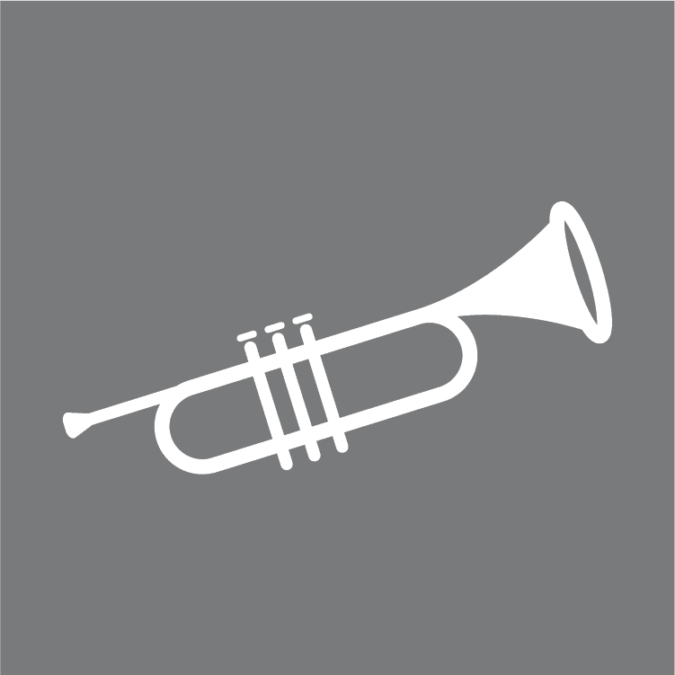 Beginner's Guide To Learning The Trumpet