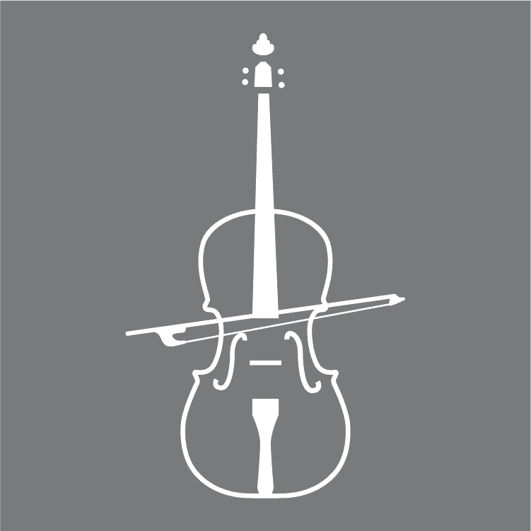 Beginner's Guide To Learning The Violin