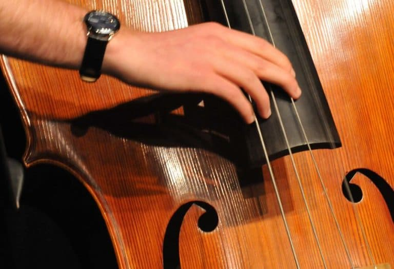 How To Choose A Double Bass
