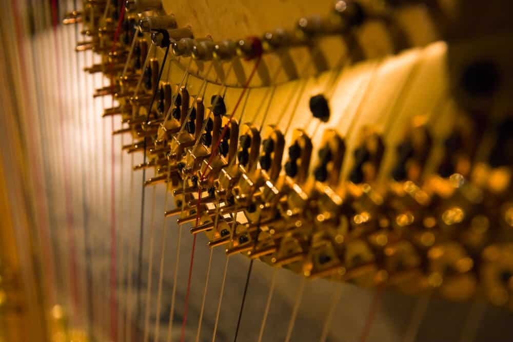 Beginners Guide to Learning the Harp