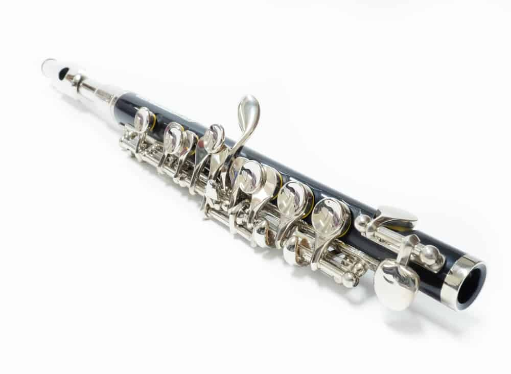 Beginners Guide to Learning the Piccolo