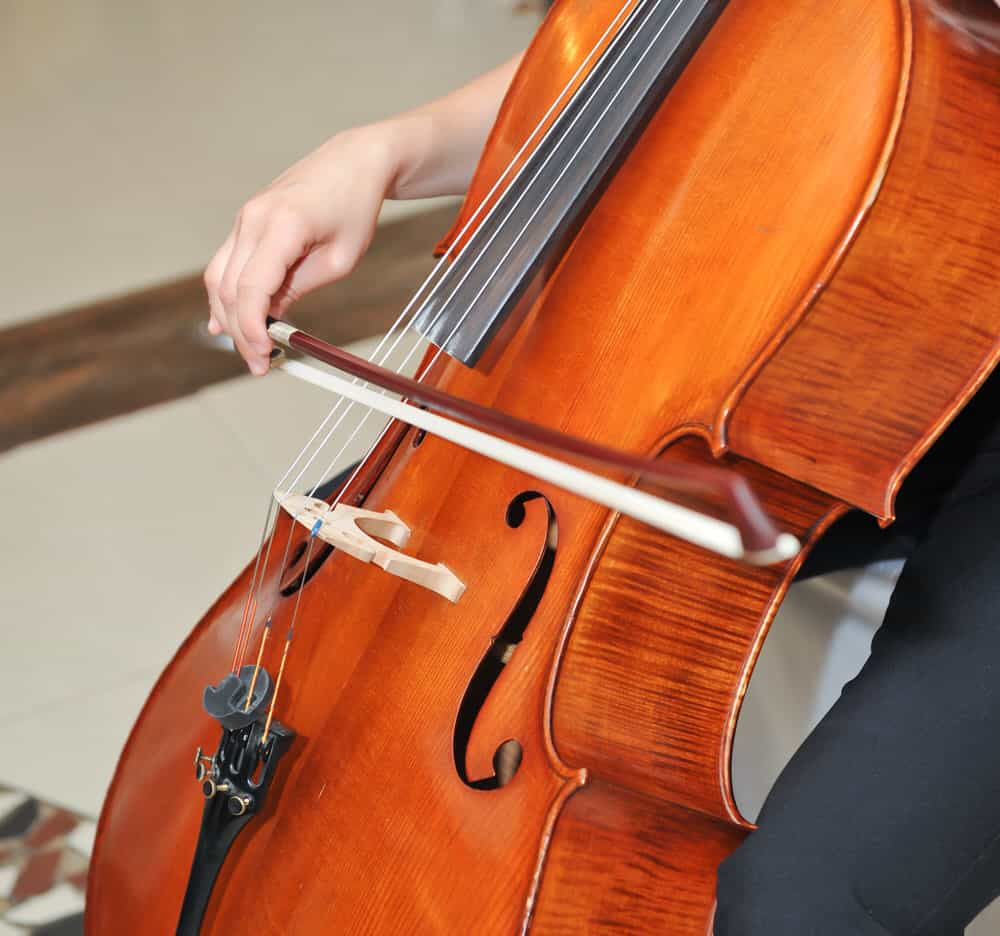 easiest string instrument to learn cello