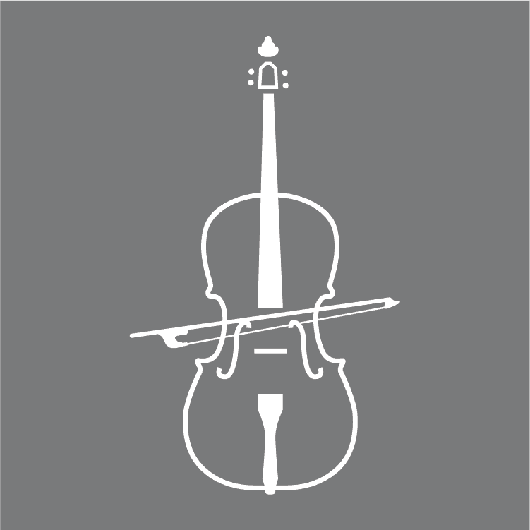 How To Play The Viola