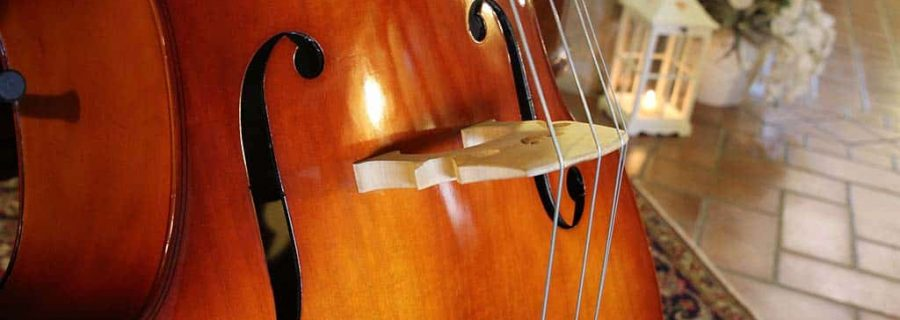 easiest string instrument to learn double bass