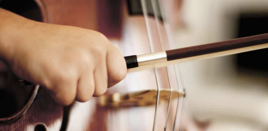 Beginners Guide to Learning the Double Bass