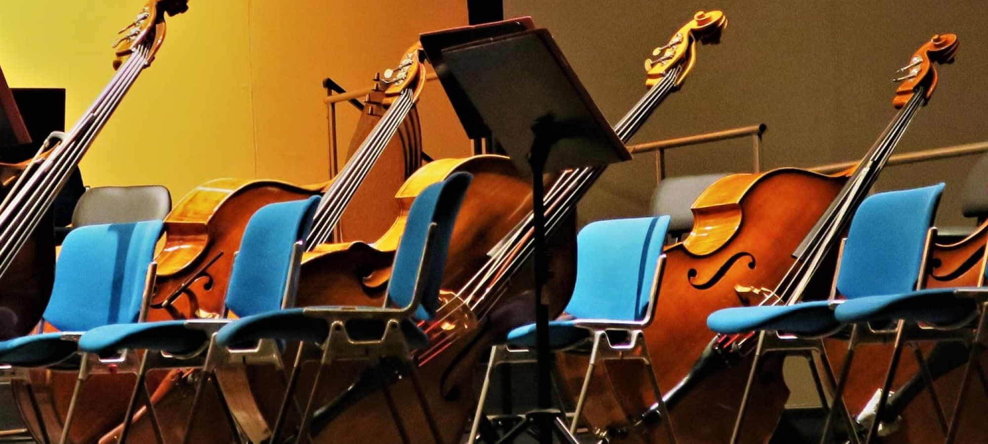 double bass review