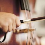 Double Bass Reviews